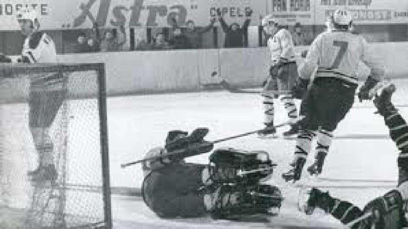 SportDoc - O hokeju i Medvjedima