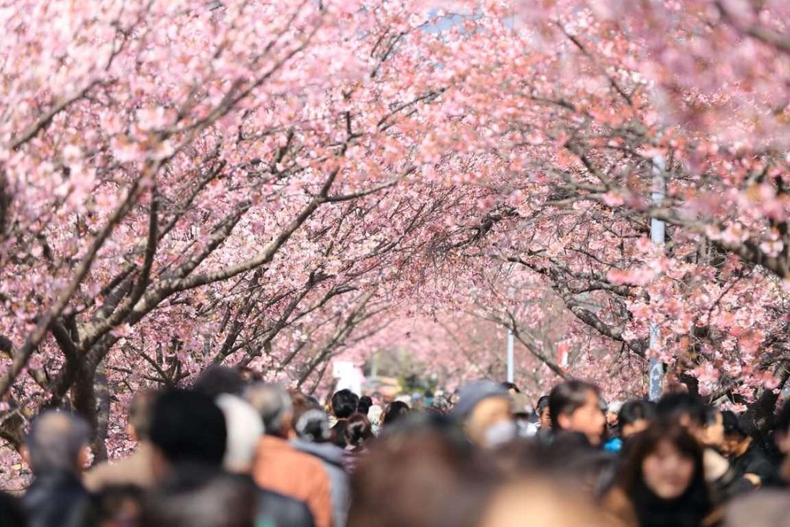 OI Tokio 2020